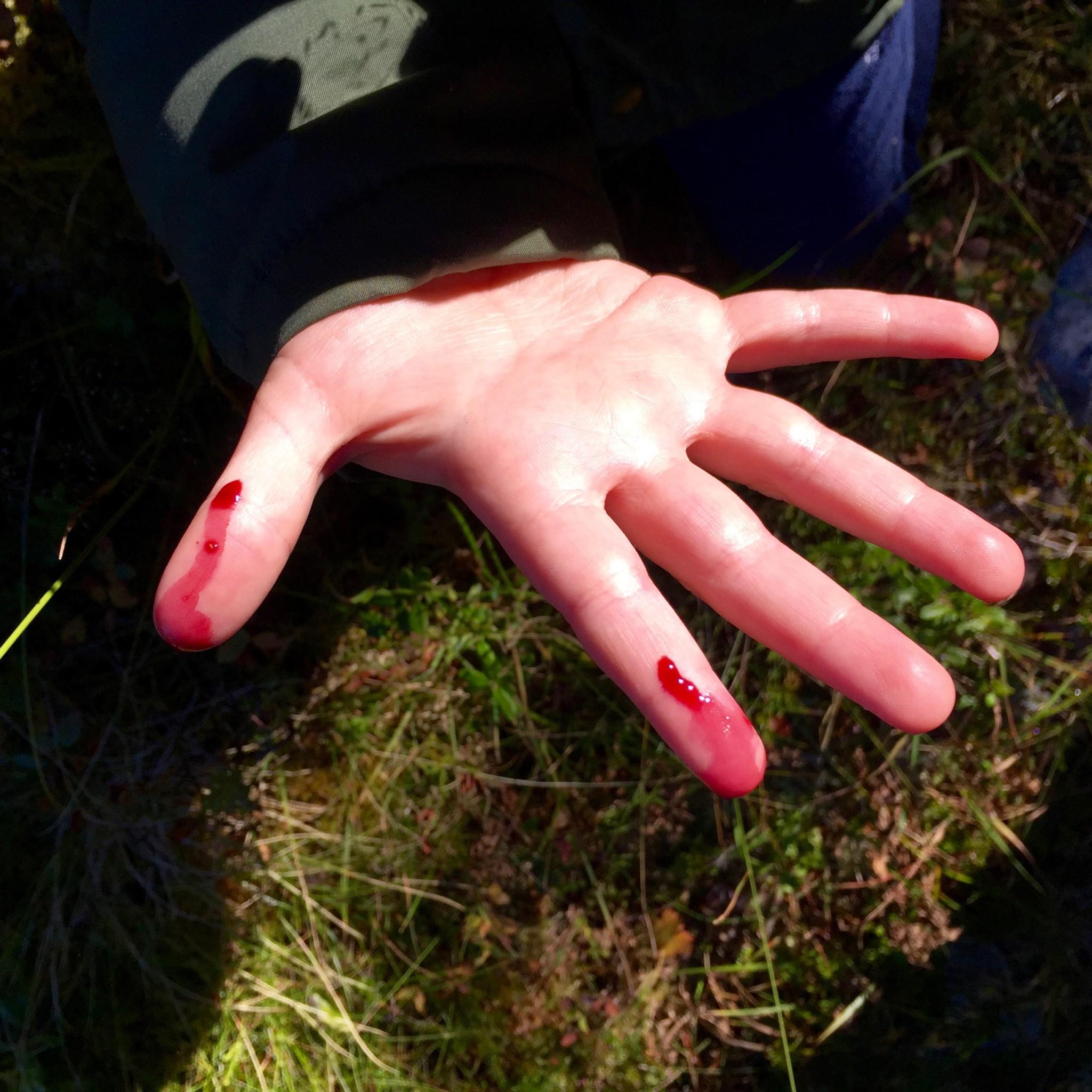 Slapp av - det er ikke blod, bare blåbær!