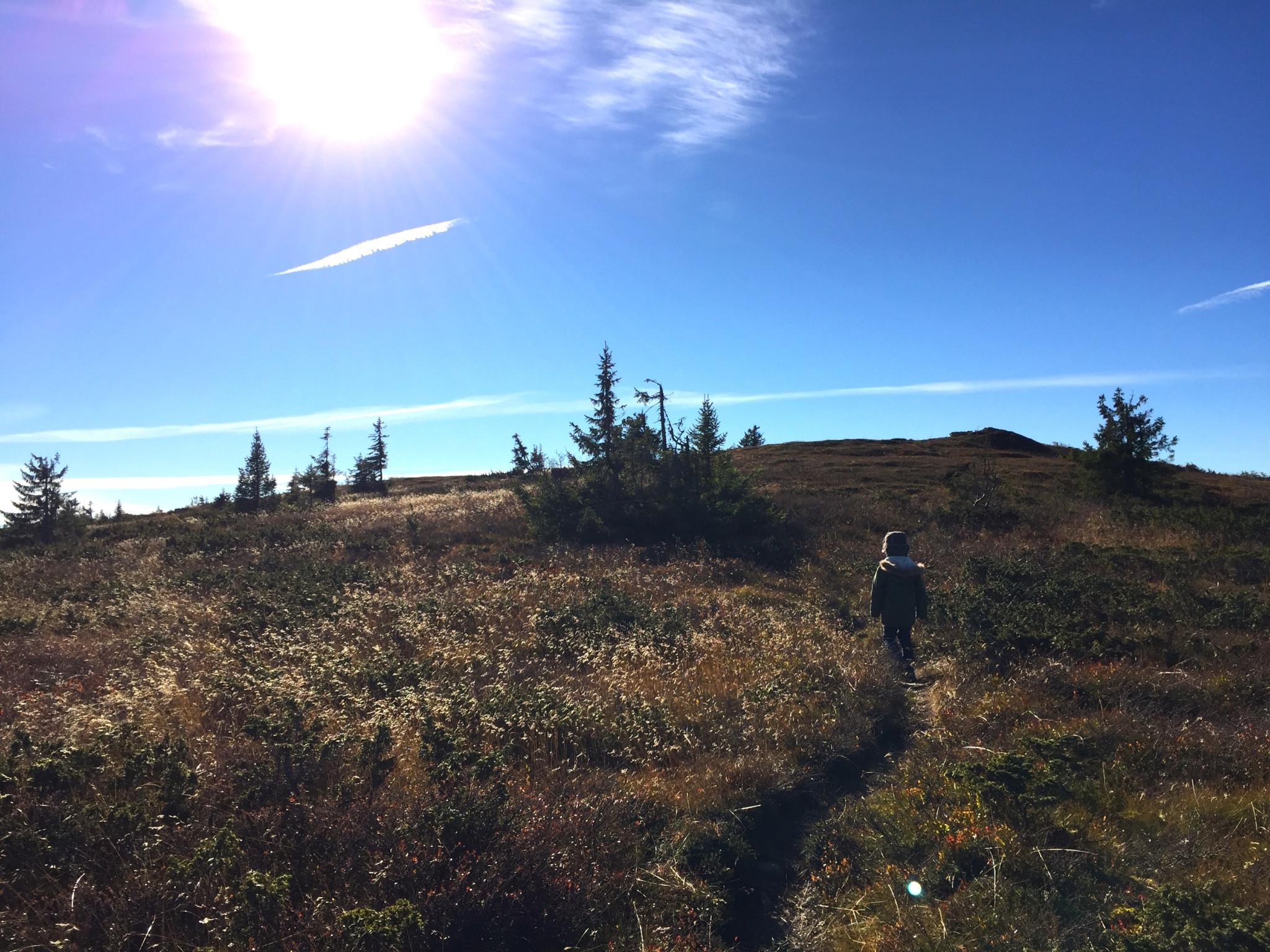 haerfjellet-gausdal-fjelltur
