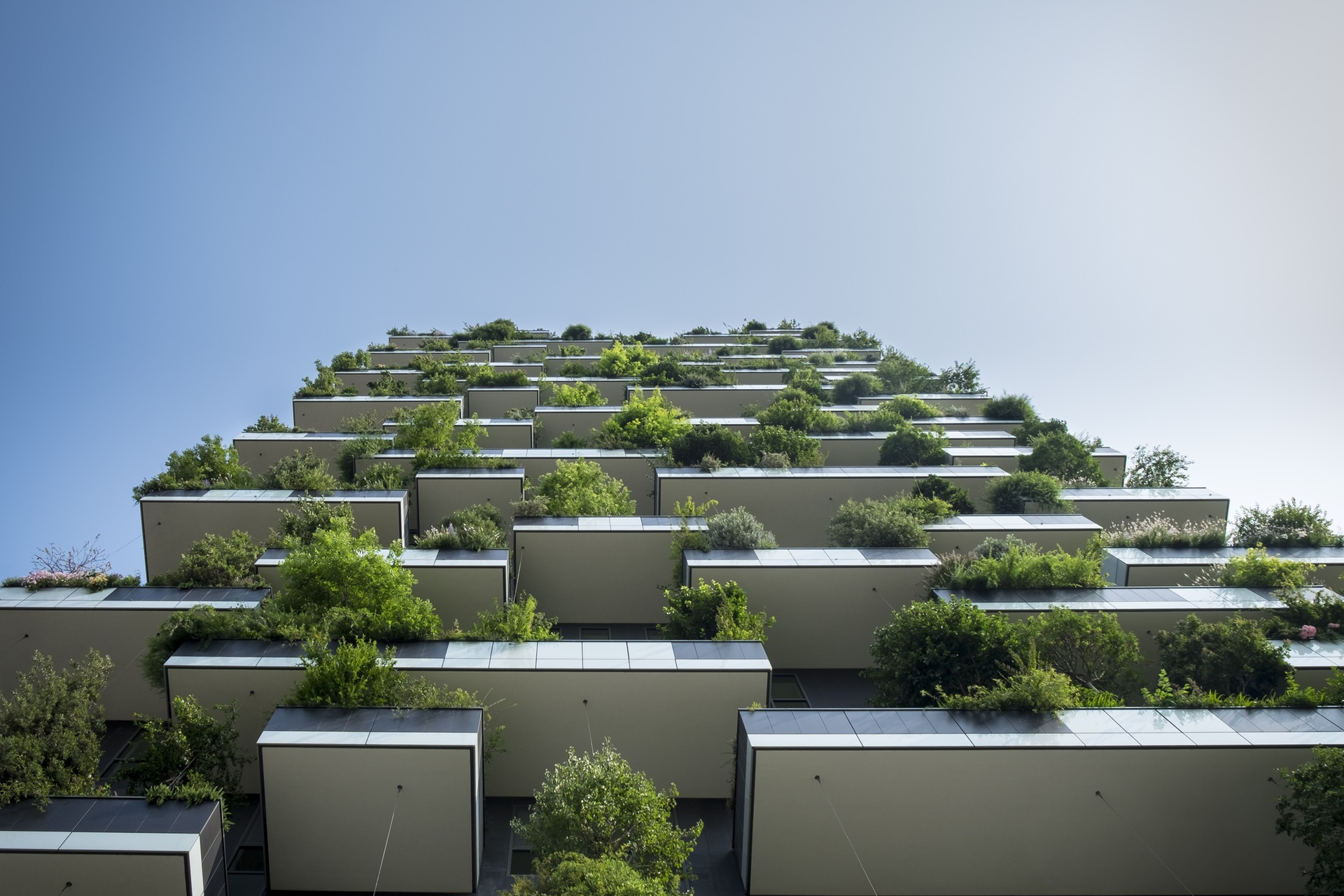 plants-building-greenery