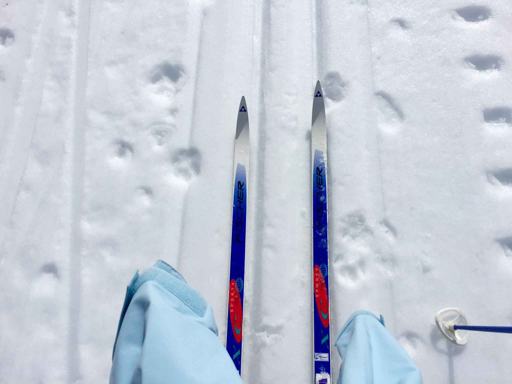 gamle-ski-ny-jakke-cross-country