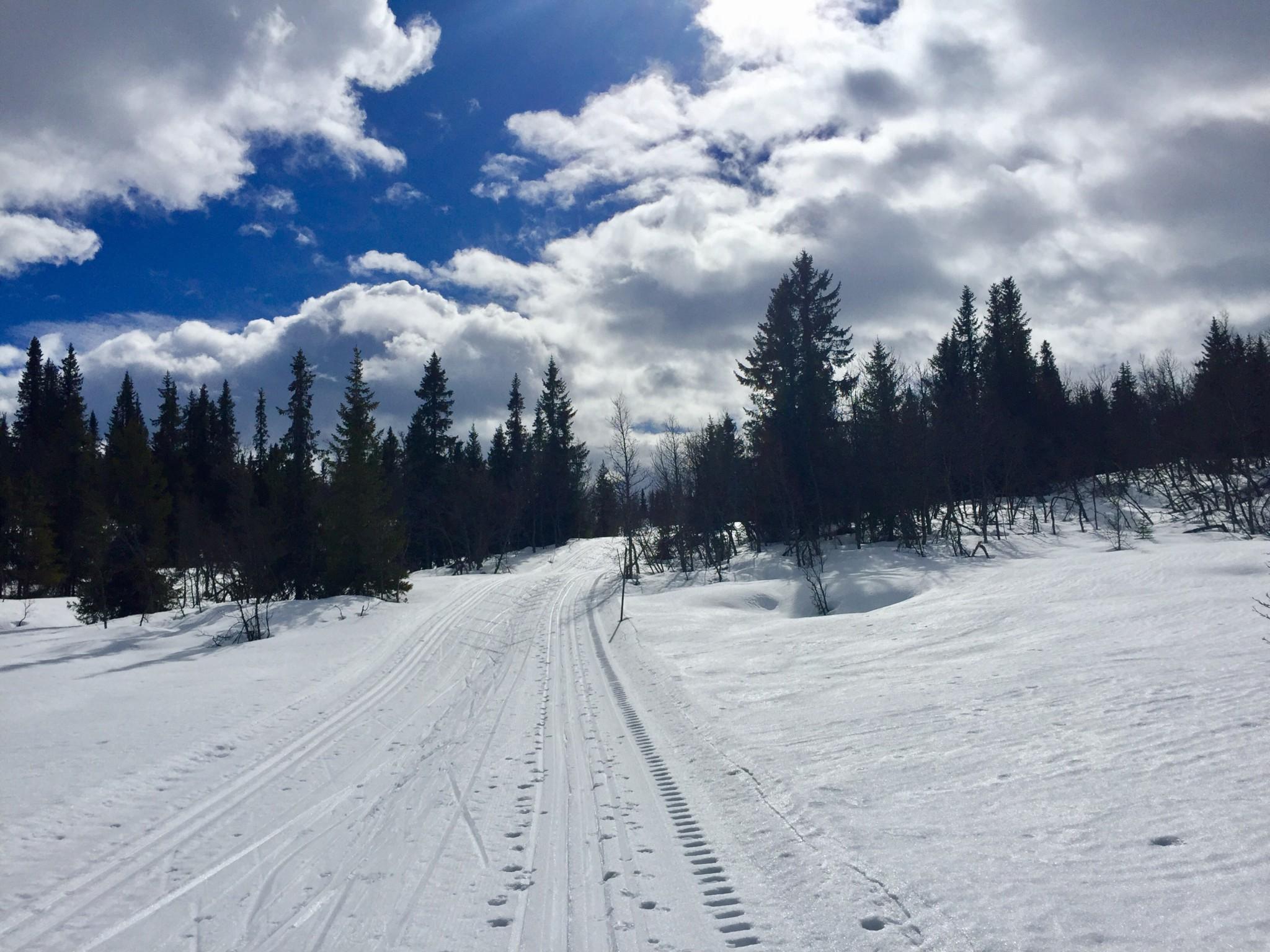 arets-siste-skitur-cross-country-gausdal