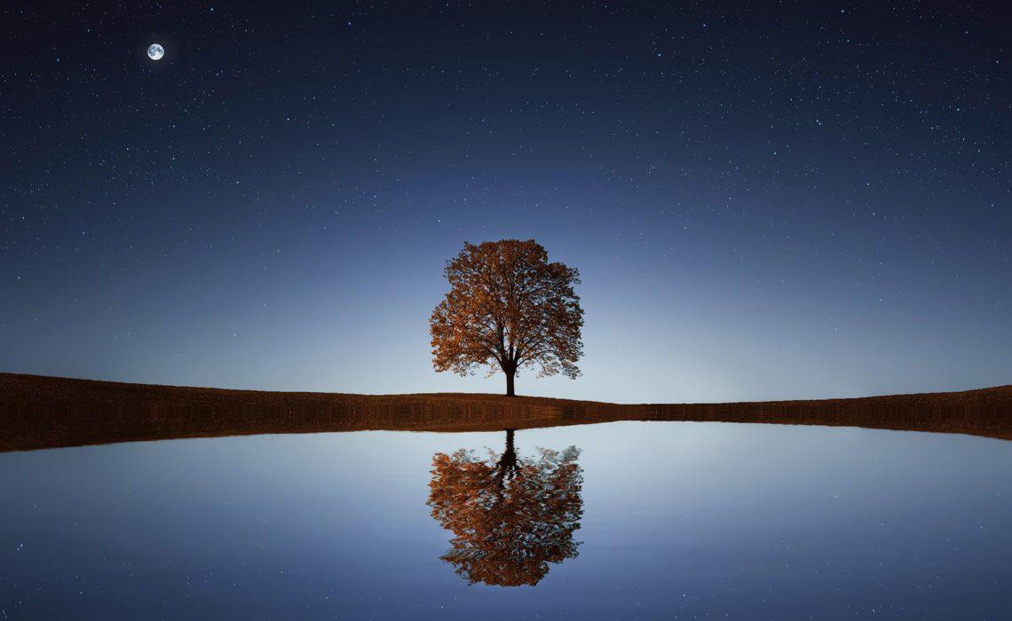happy-earth-day-tree-water-stars-moon