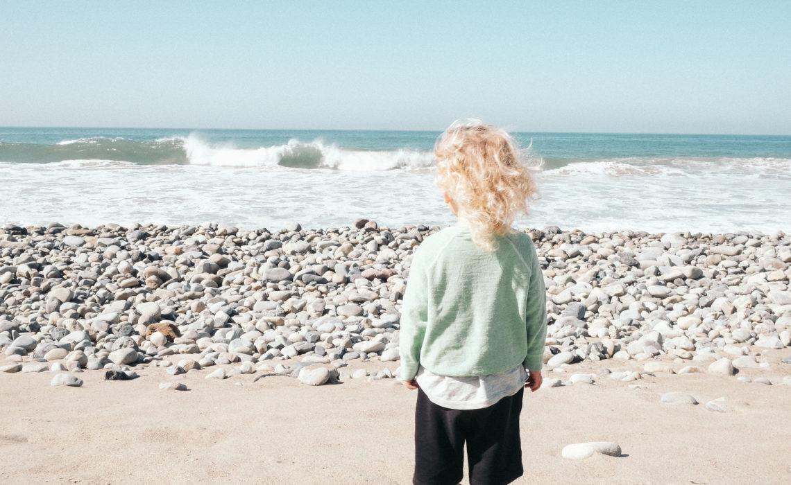 vinter-malibu-ocean-surf-green-house