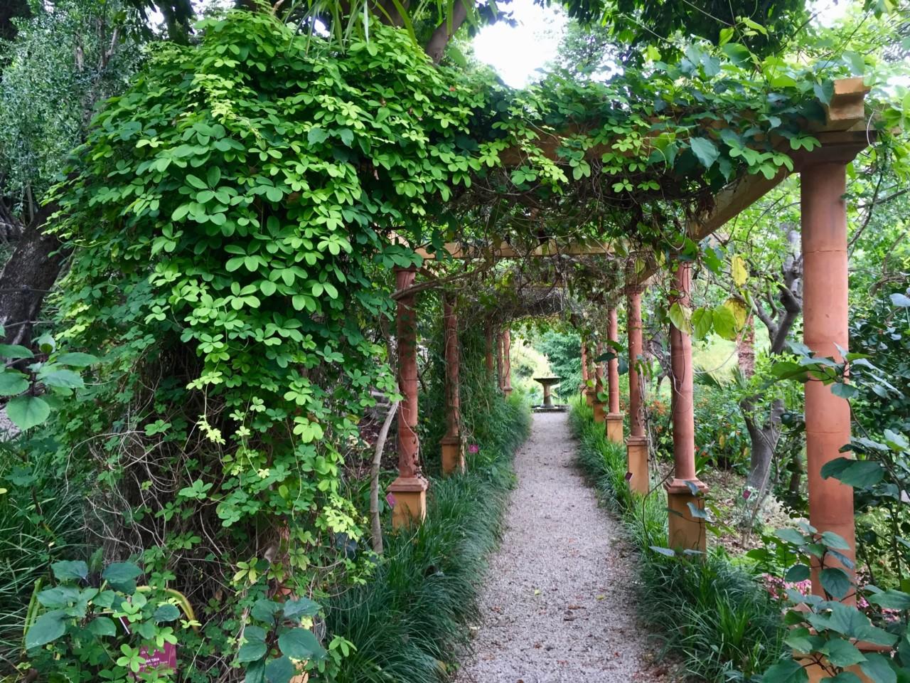 botanisk-hage-menton-cote-azur-green-house