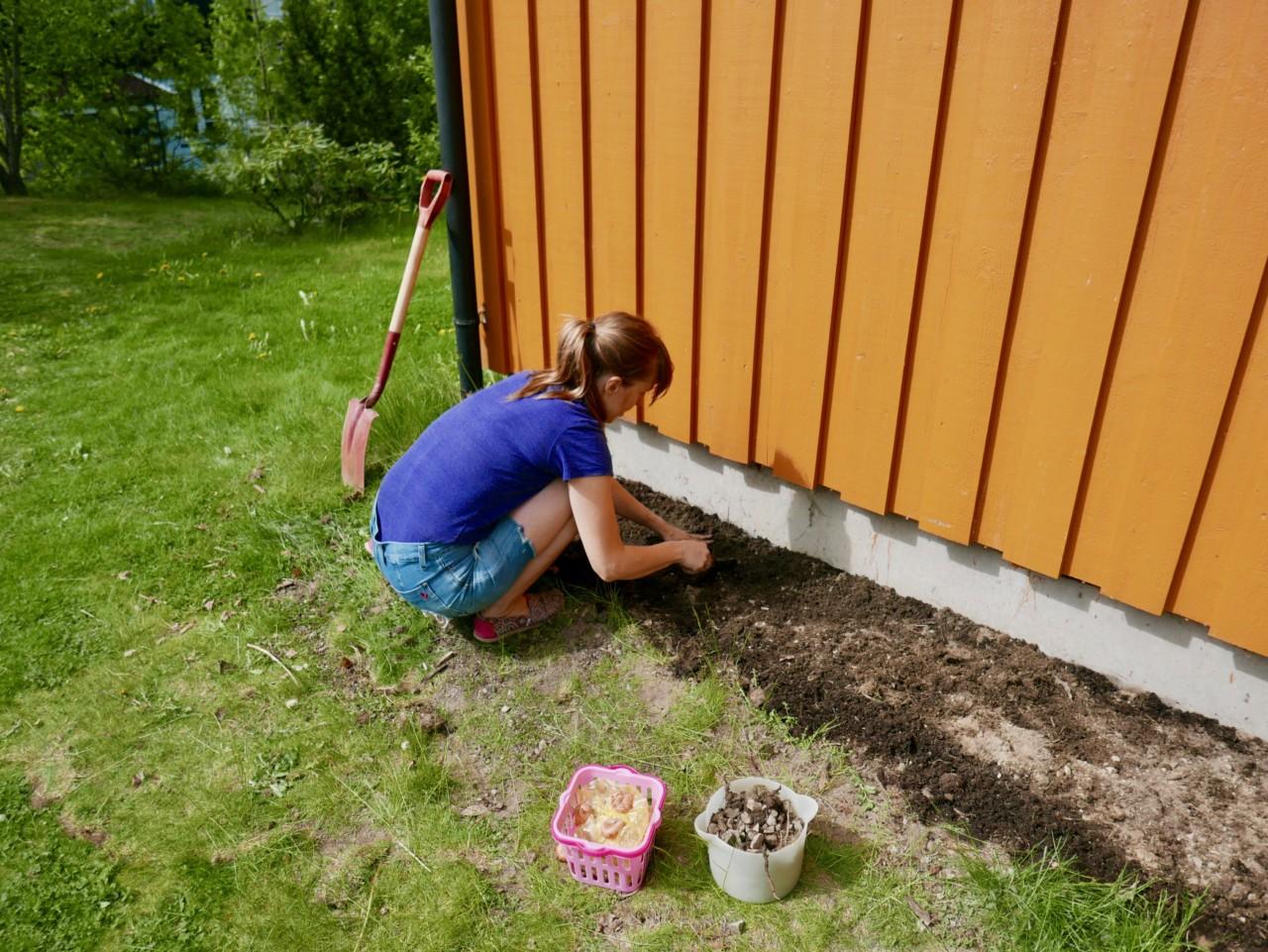 hage-prosjekt-garden-blomster-bed-anja-stang