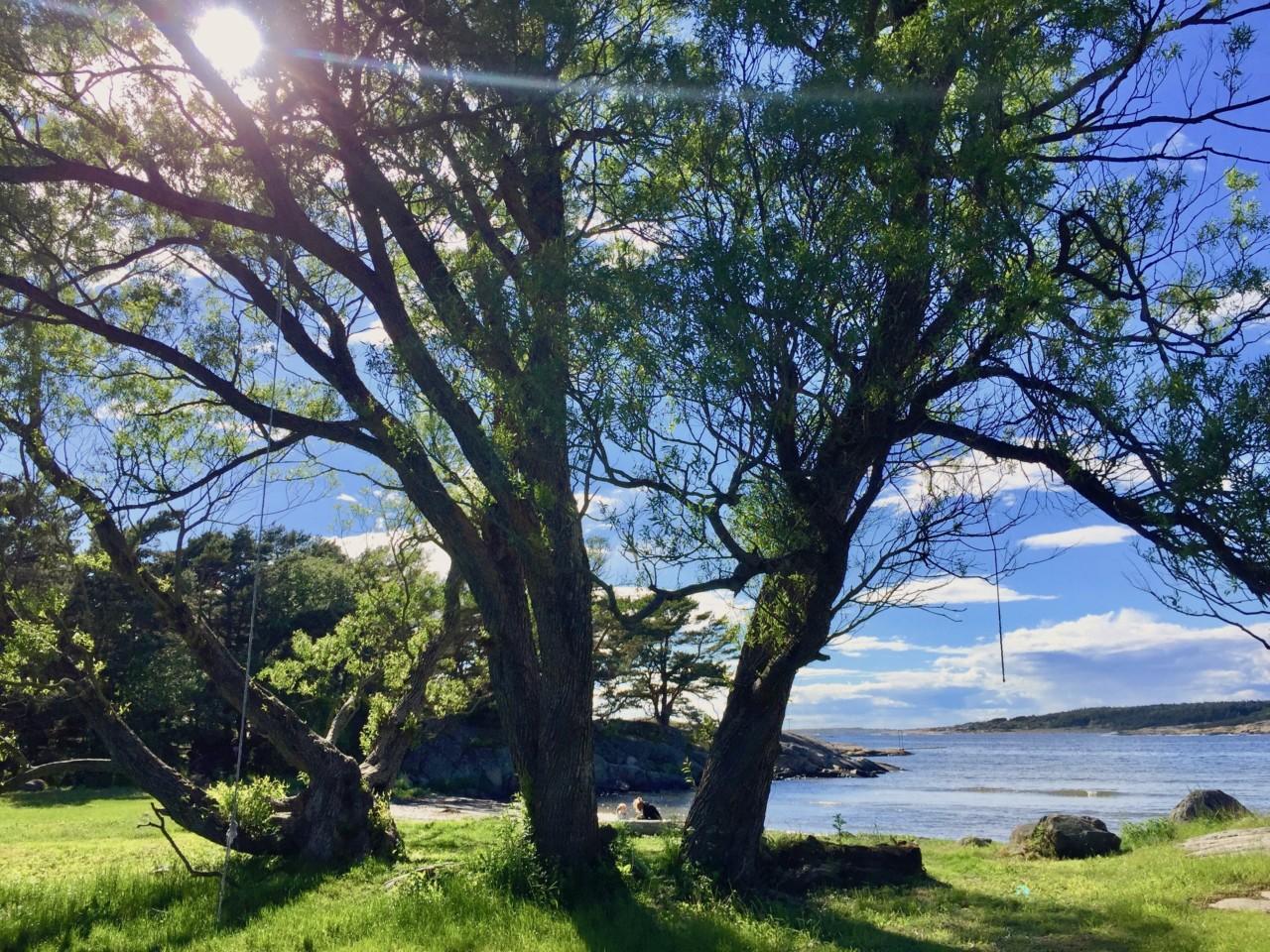 tre-storesand-hvaler-nasjonalpark-ocean