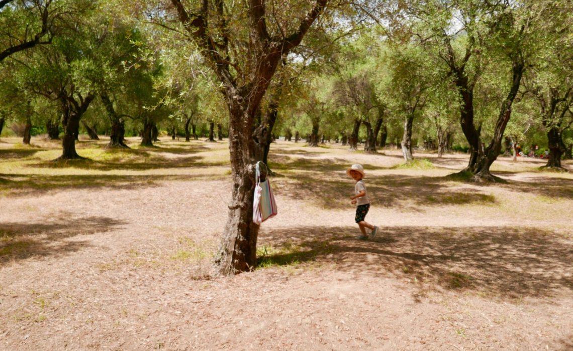 happy-kids-parc-du-pian-menton-olive-park