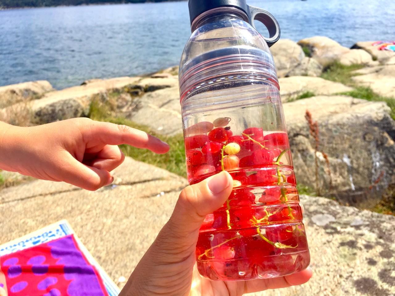 reusable-water-bottle-aker-brygge-rips-anja-stang