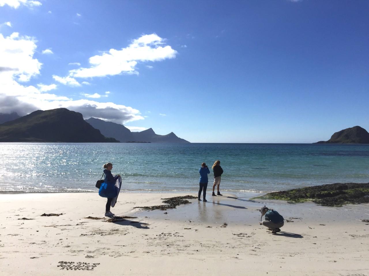 team-beach-julie-pike-eben-handbags-lofoten
