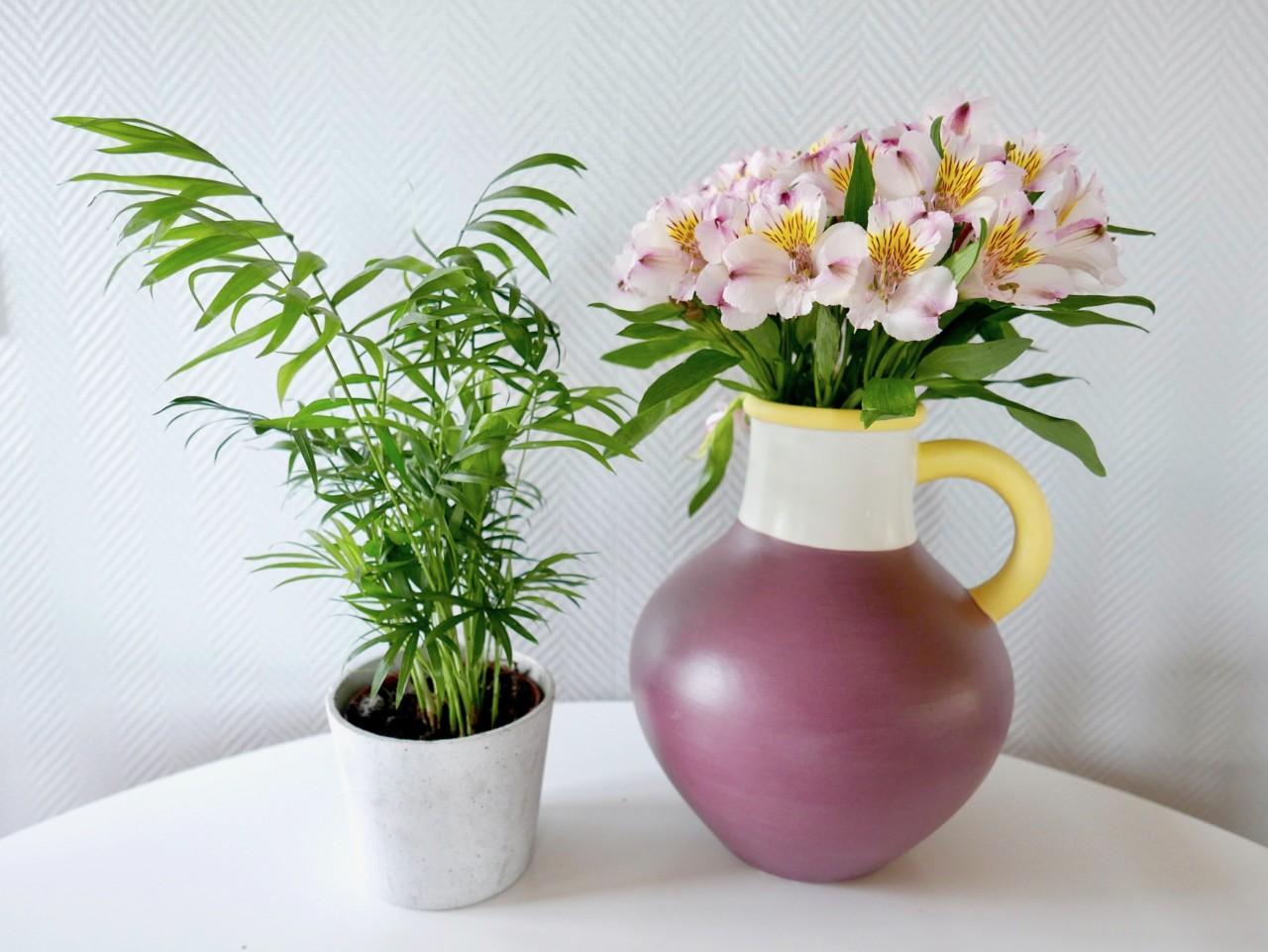 blomster-fars-dag-palme-green-house