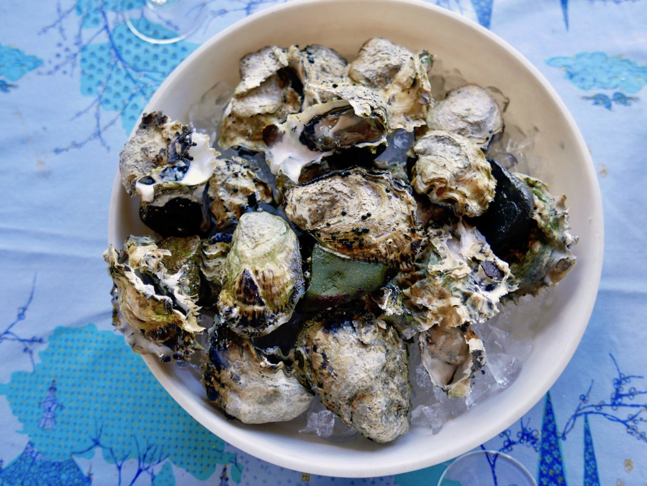 osters-oysters-havets-frukter-wiinblad-nesodden-green-house-anja-stang