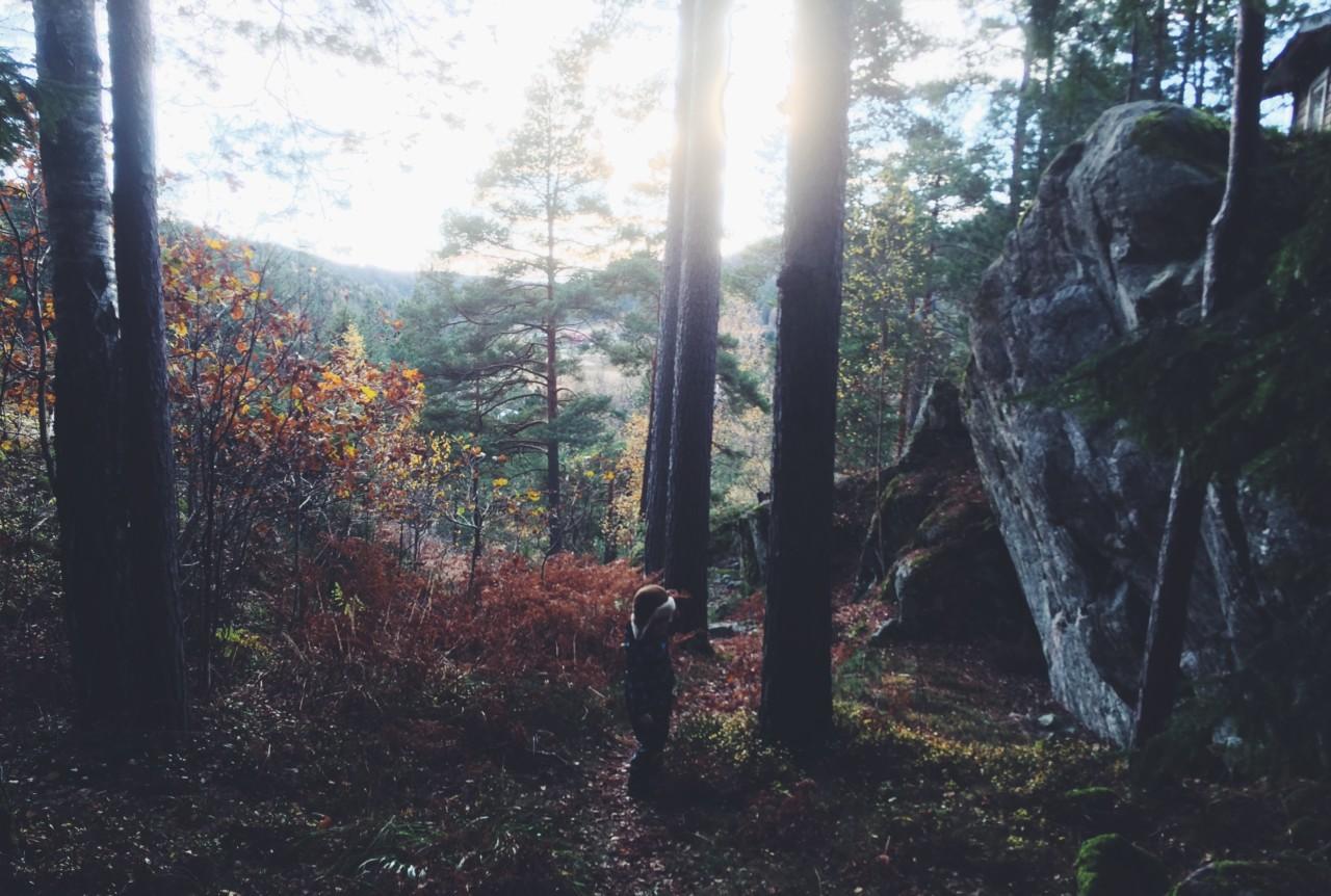 skog-nesodden-karen-rosenberg-olsen