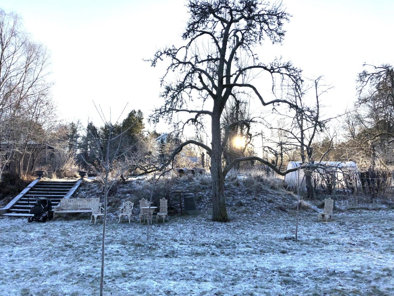 lindehagen-vinter-nesodden-green-house