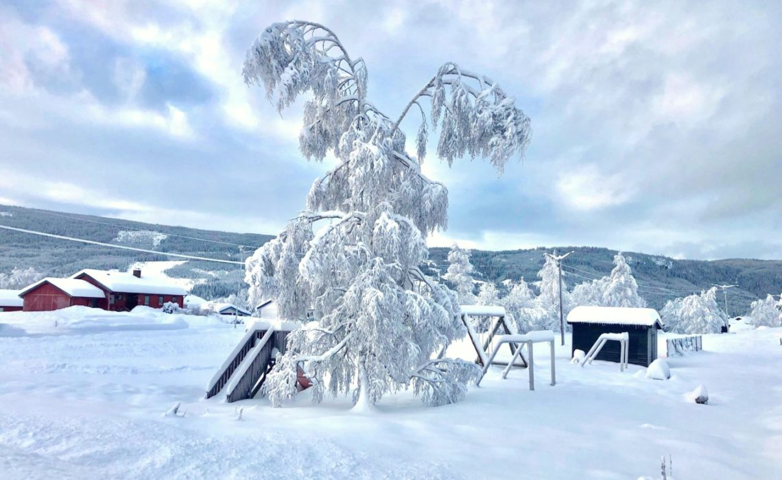 vestre-gausdal-juleferie-nyttar-snow-green-house