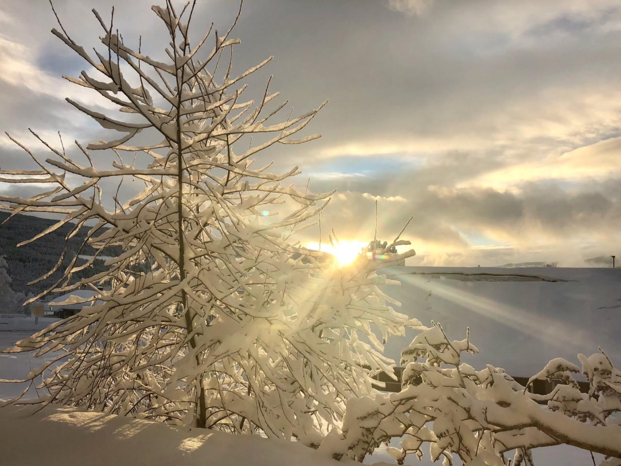vinter-sol-juleferie-gausdal-anja-stang-no