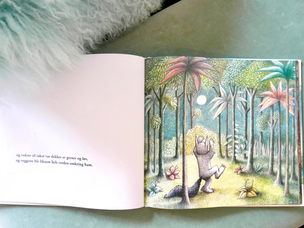til-huttetuenes-land-maurice-sendak-klassiker-barnebok