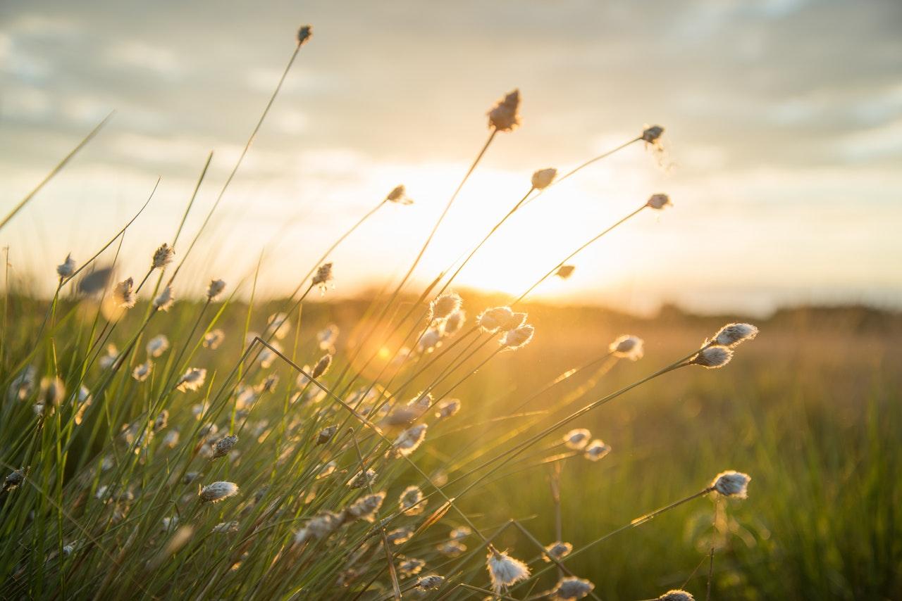 God energi: Here comes the sun