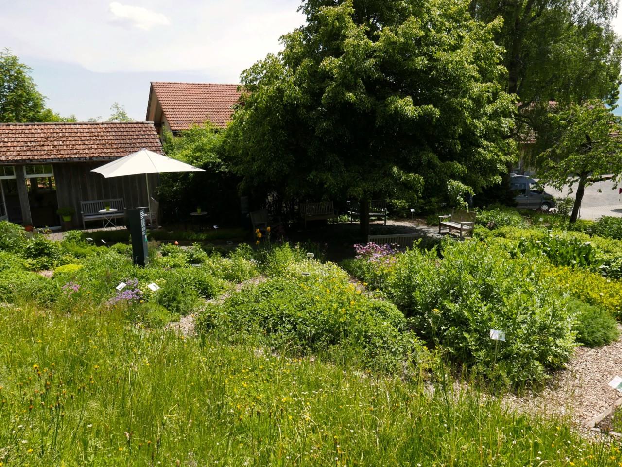 a-vogel-urtehage-teufen-green-house