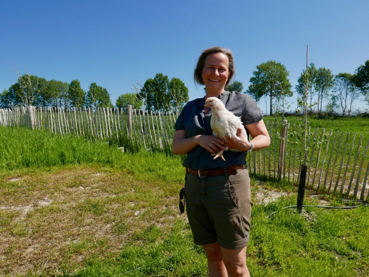 marianne-hovelsrud-gard-okologisk-kylling-green-house