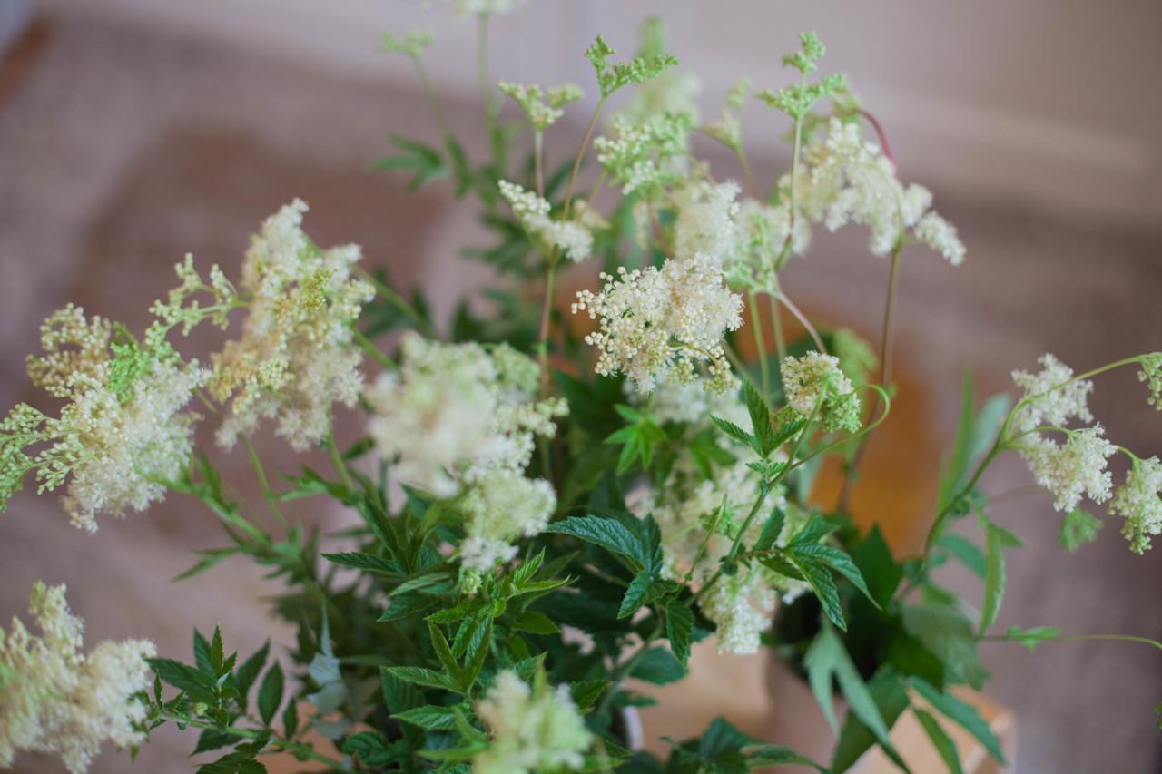 spiselige-blomster-mjodurt-green-house