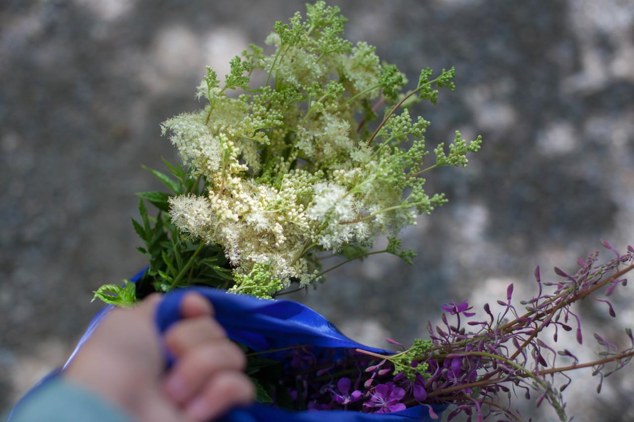 spiselige-blomster-plukk-green-house
