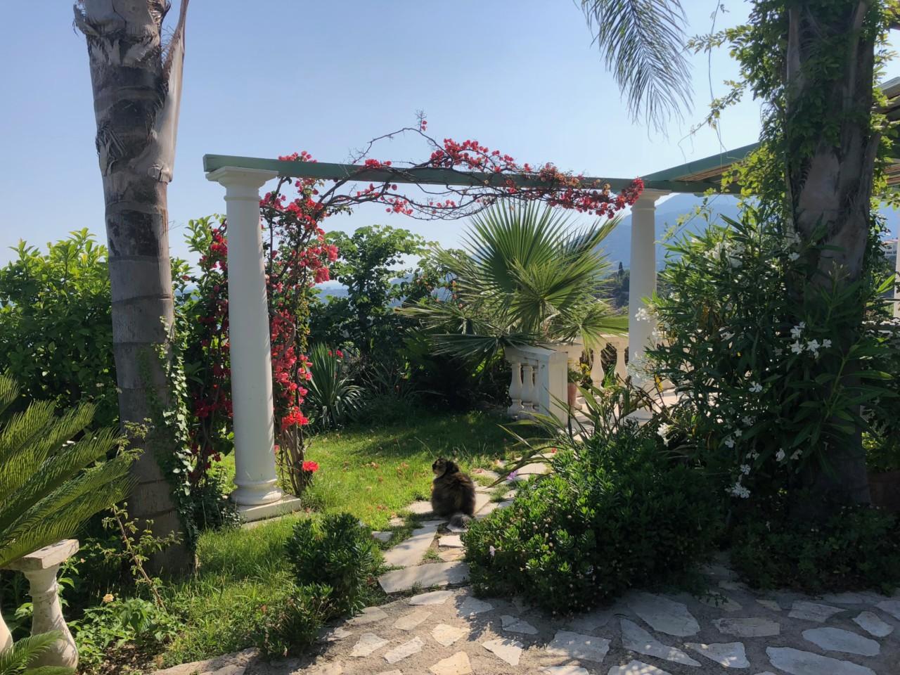 hage-frankrike-middelhavet-green-house