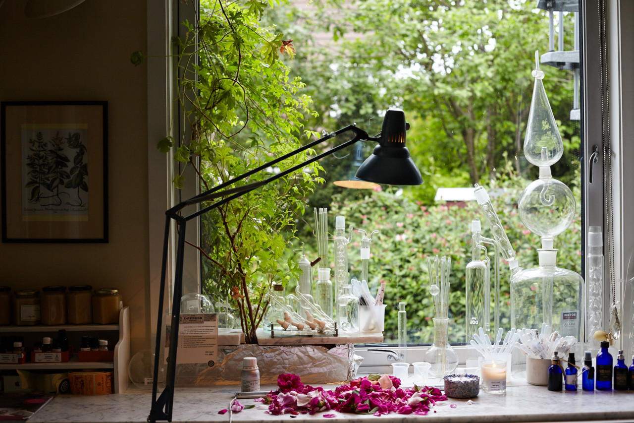 kontor-rasa-naturales-green-house-foto-beathe-schieldrop