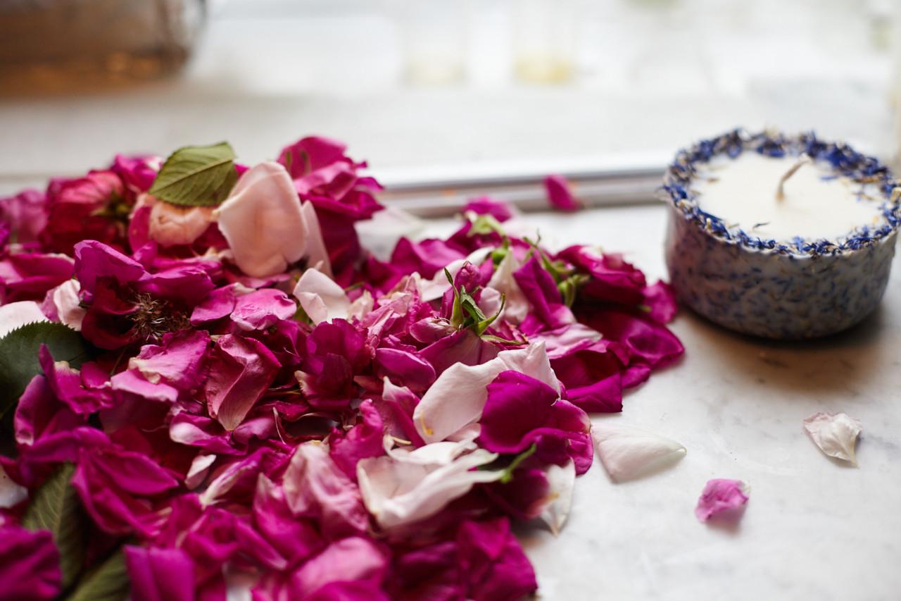 roser-duftlys-lavendel-naturales-beathe-schieldrop-green-house