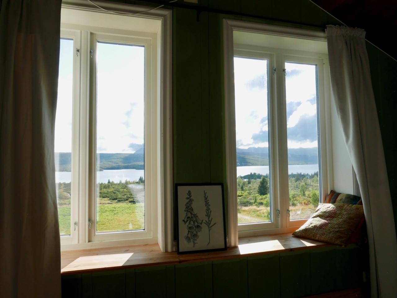 utsikten-fra-vinduet-mitt-nosen-feminin-yoga