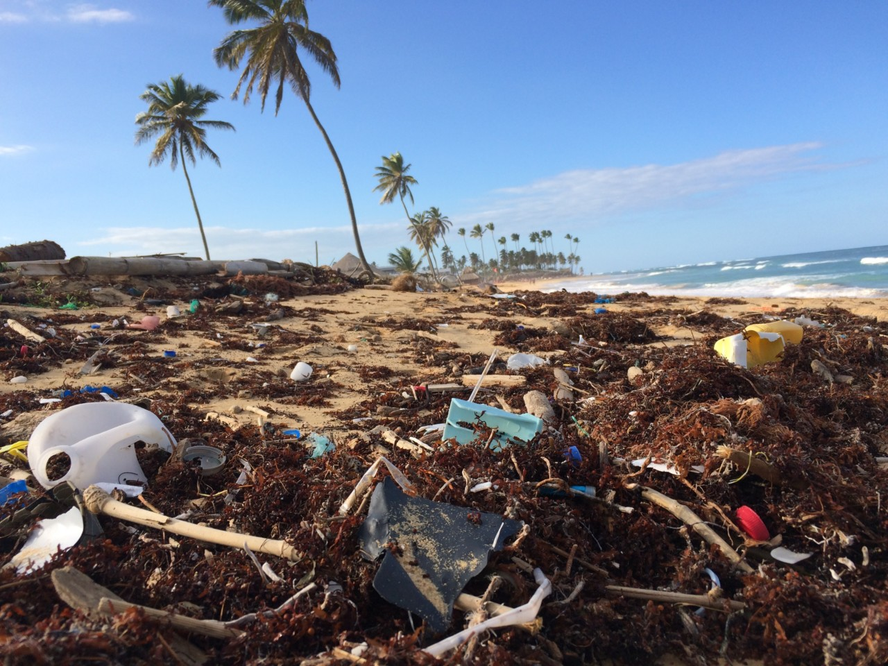 dustan-woodhouse-ocean-waste-beach-polyester-unsplash