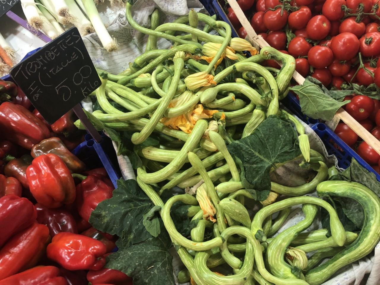 squash-blomster-trompettes-marked-frankrike-italia