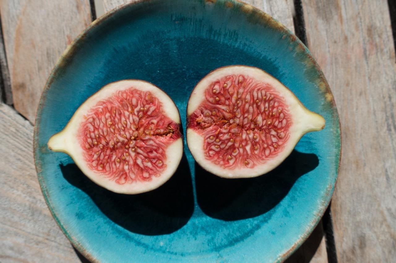fiken-delt-tallerken-frukt-vegansk-mat-veganerutfordringen
