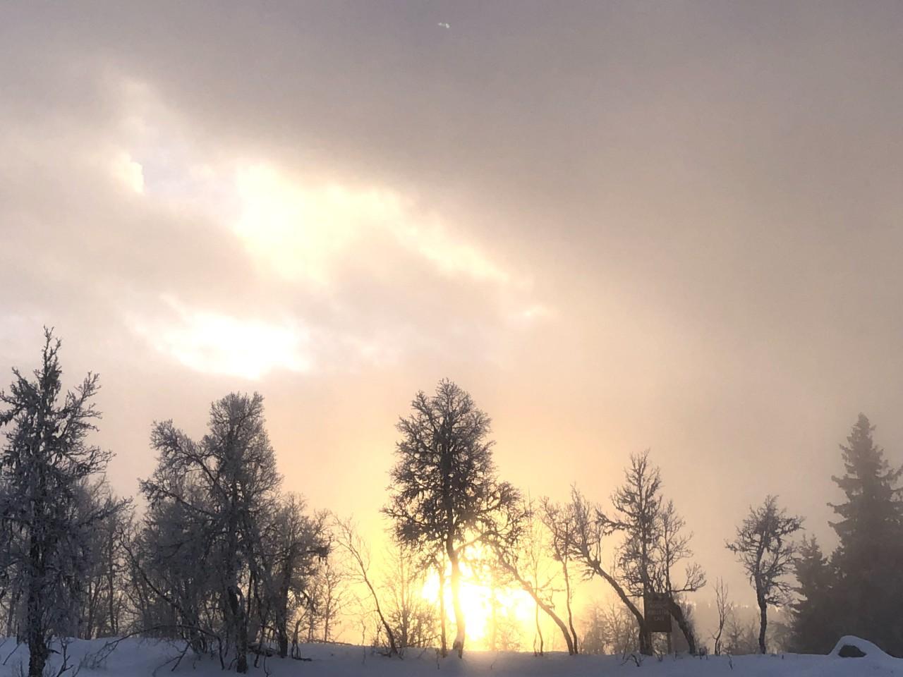 sno-vinter-gausdal-skeikampen-austlid-norge-green-house