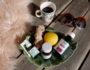 echinaforce-solhatt-toddy-halsspray-vogel-green-house