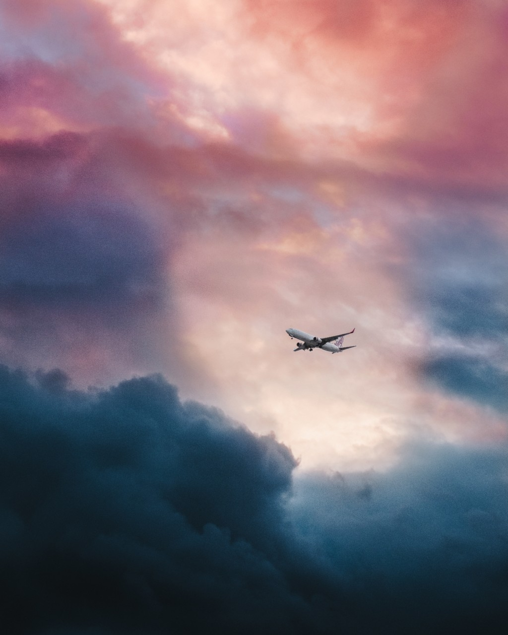 fly-rosa-himmel-leio-mclaren-unsplash-green-house
