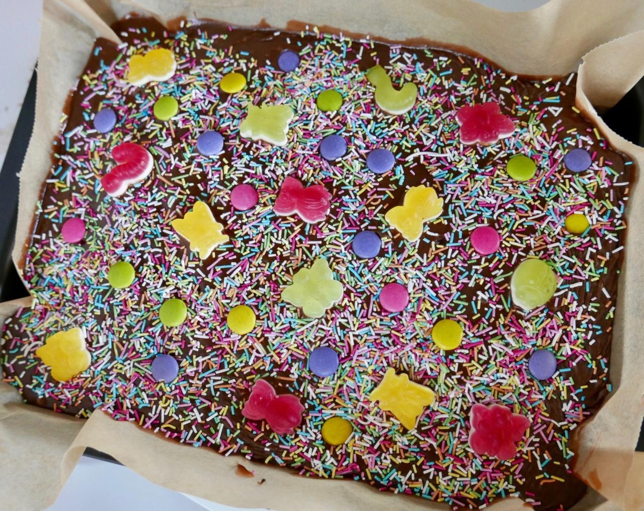 glutenfri-sjokoladekake-pyntet-insekter-langpanne-sunnere