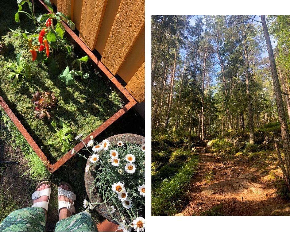 hage-bedd-dyrking-nesodden-marka-skogturer-kortreist-ferie