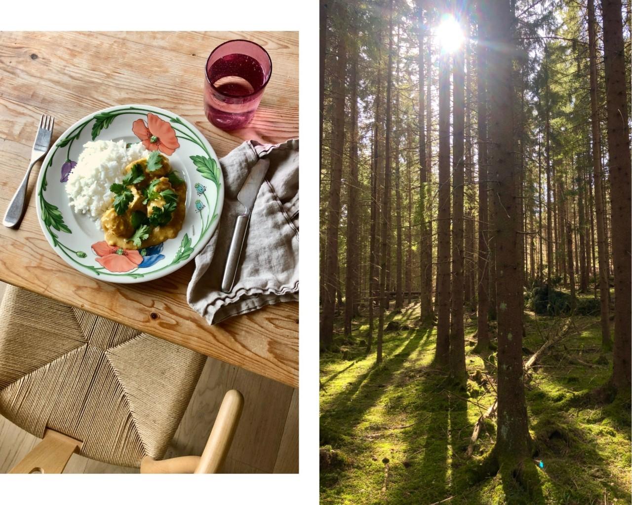 paneer-middag-gronn-skog-ro-karantene-korona-nesodden