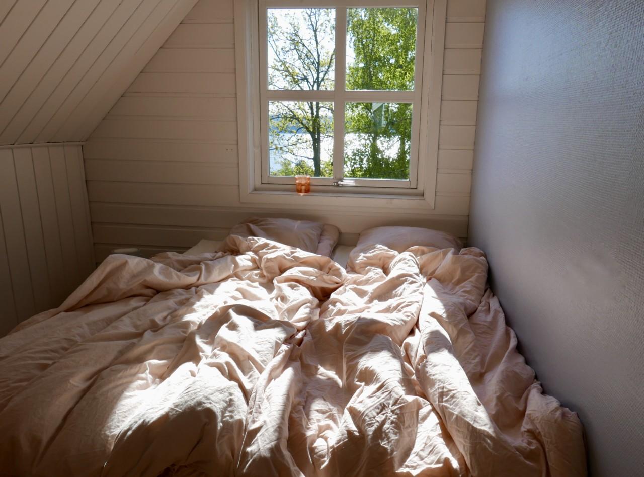 sol-i-senga-morgen-stemning-nesodden-coco-mat-blader-havutsikt