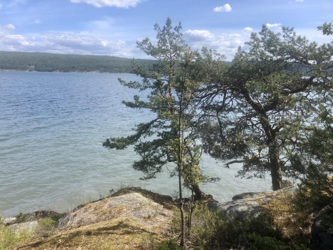 nesodden-kyststien-lokal-sommer-hav-svaberg