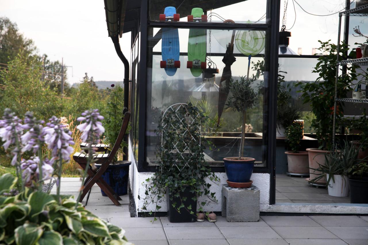 ettermiddag-drivhus-vinterhage-aquaponics