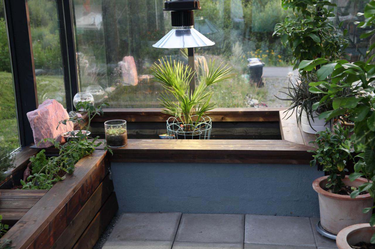 koi-dam-botanisk-hage-green-house