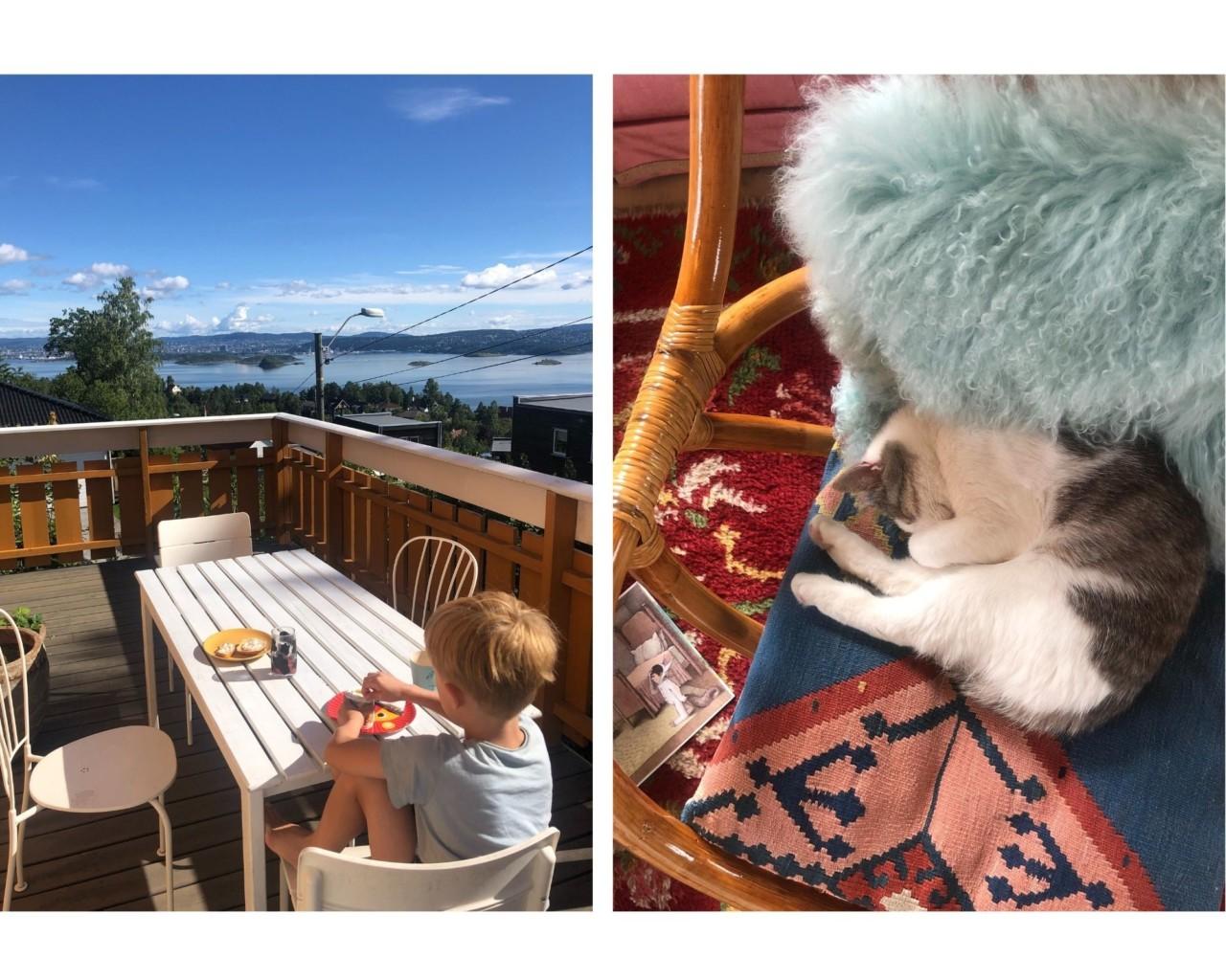 terrasse-havutsikt-nesodden-oslo-katt-sover