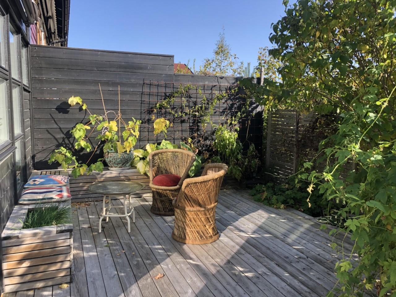 oase-terrasse-brukte-stoler-tise-marokkansk-fat-kelim-puter-cozy-living-green-house