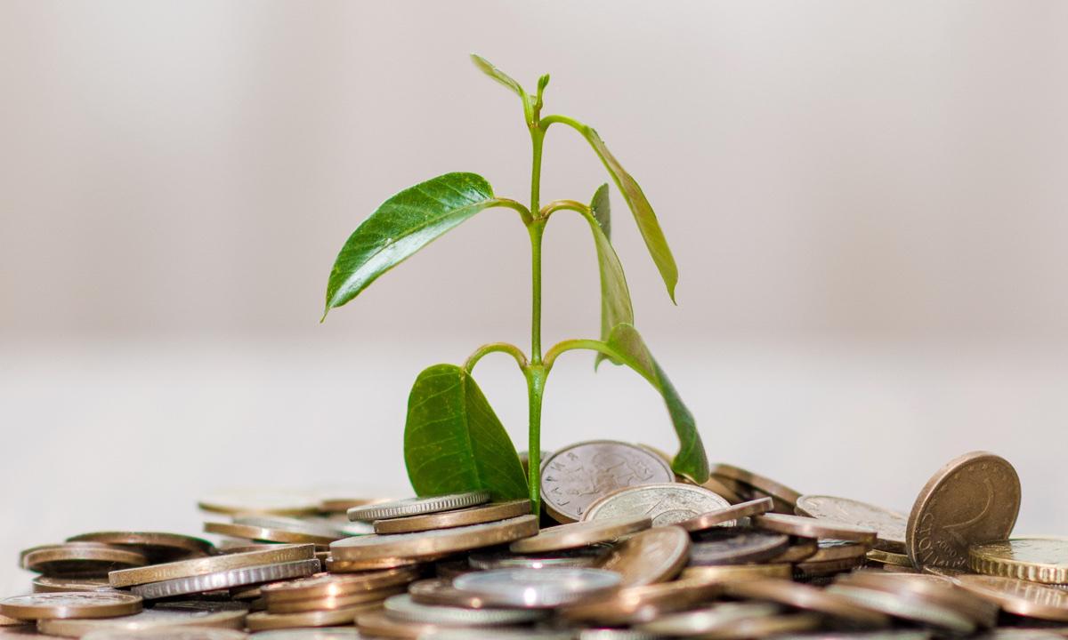la-pengene-vokse-gronne-etiske-investeringer