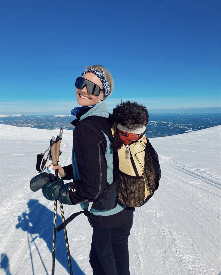 ada-martini-panda-dog-backpack-ski