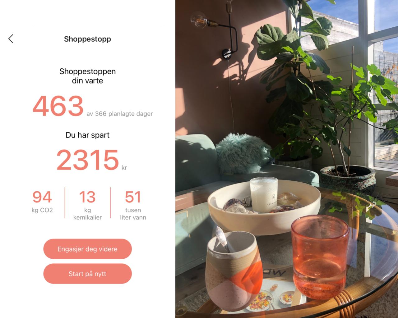 shoppestopp-2020-2021-tise-greenhouse