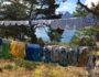 toybleier-med-utsikt-hyttetur-gloppen-greenhouse